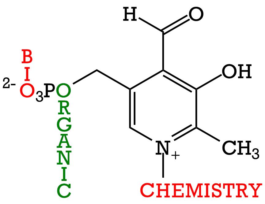 bio organic logo